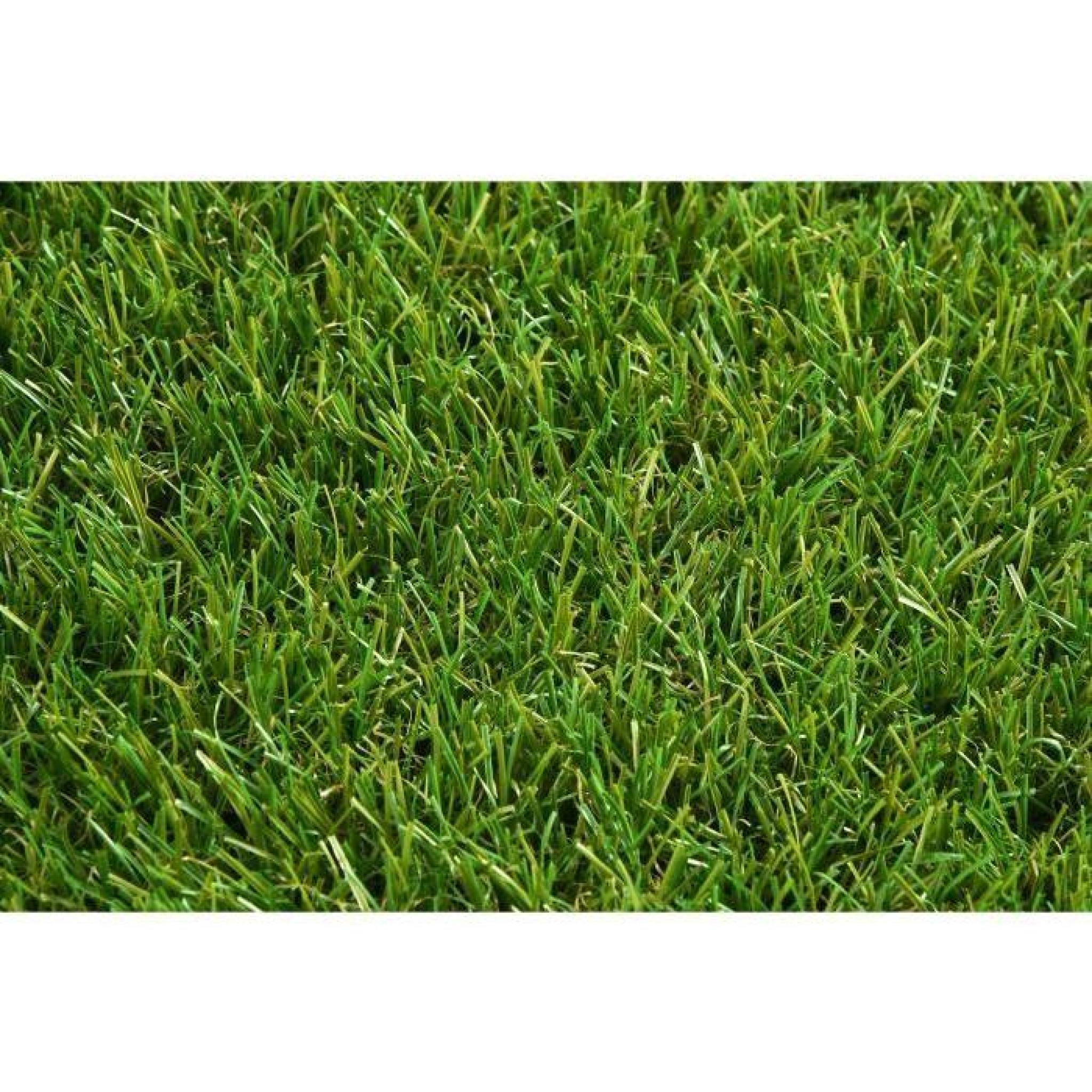 exelgreen gazon synth tique c revolution gb 3820 20 mm bobinot de 2x20 m achat vente gazon. Black Bedroom Furniture Sets. Home Design Ideas