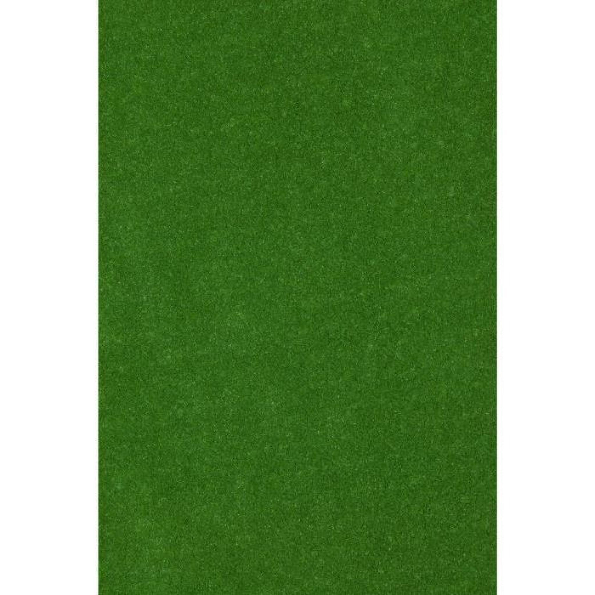 Exelgreen Moquette Imitation Gazon Synthétique Primo 5mm 1x4m