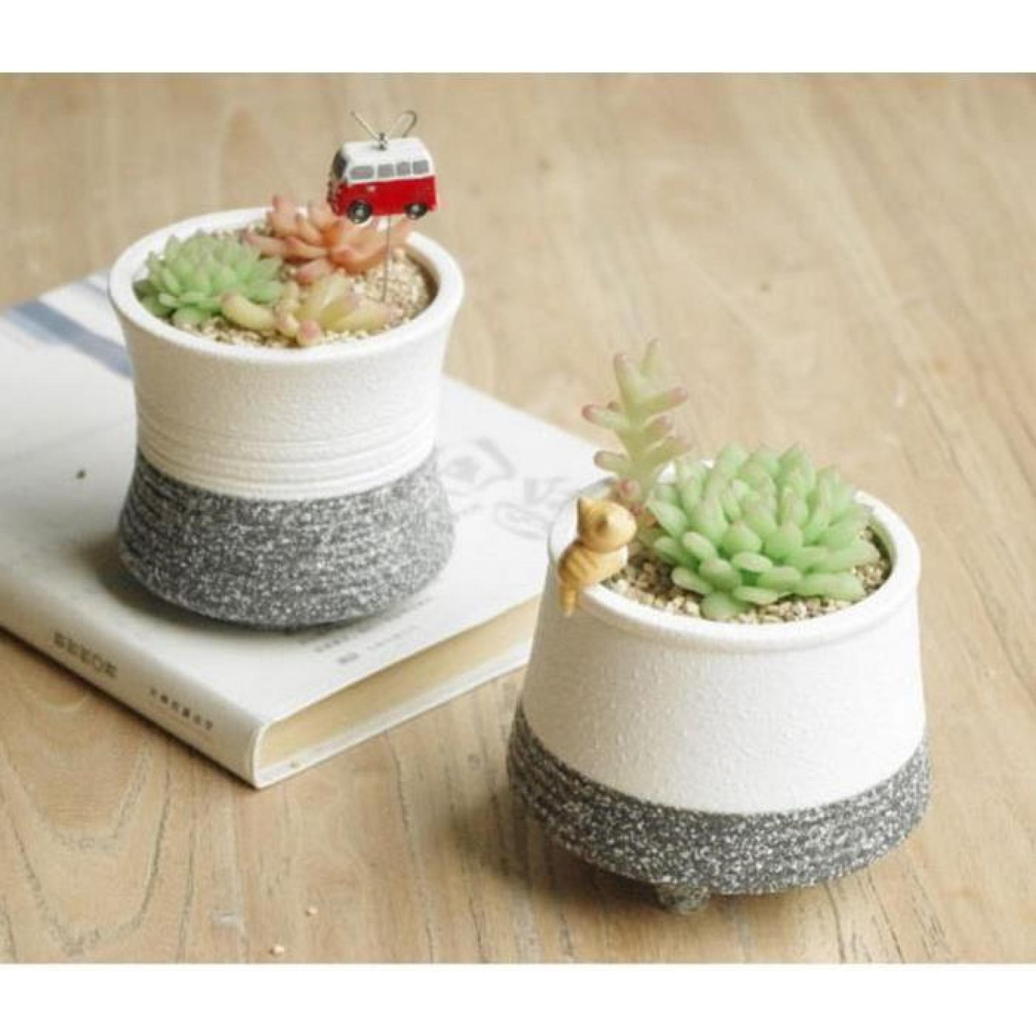 plante succulente pots fleur de neige snow mountain 4 achat vente pot de fleur en resine pas. Black Bedroom Furniture Sets. Home Design Ideas