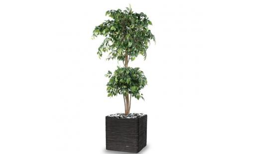 Decoration de jardin Artificielles.com  - ficus artificiel double boule h 180 cm vert en pot pas cher